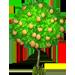 Albero di Limoni