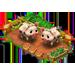 Porcile Maiale Pietrain