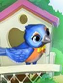 Sammy l'Uccello Canterino